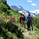 group treking Austrian Alps