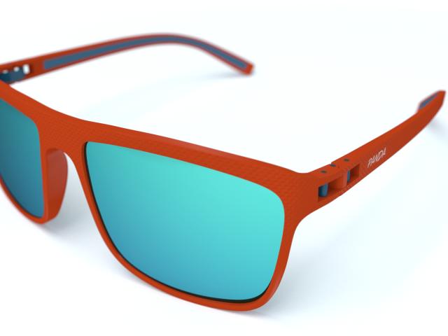 Panda Optics Cove sunglasses