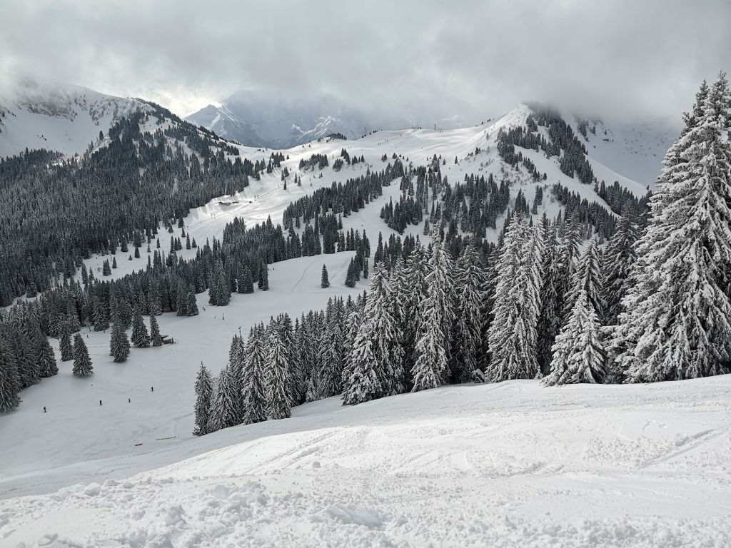 Chatel review in France